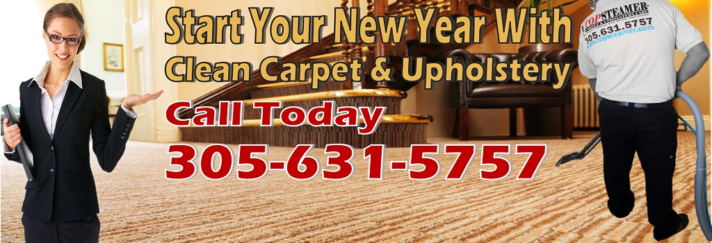 Start Your New Year With Clean Carpet, Upholstery, Rugs or Tile and Grout